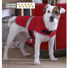 Lands End Pet Squall Jacket