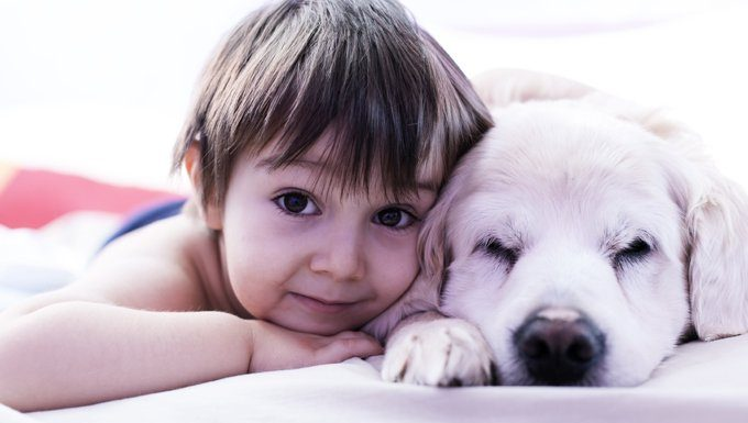child lying with dog