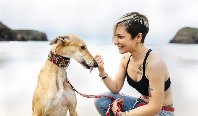 Spain, Llanes, smiling young woman with her greyhound on the beach