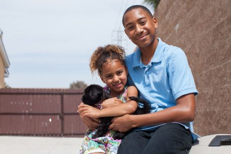 Finding The Right Family-Friendly Dog For You
