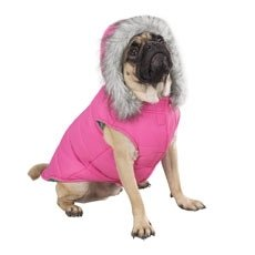 Product Review: Trendy Puppy Reversible Puffy Vests