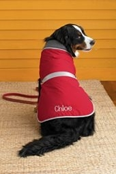 Product Review: Lands' End Pet Squall Jacket