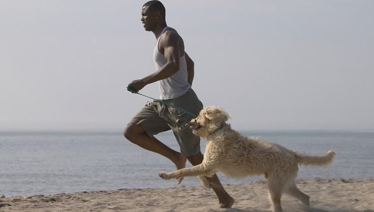 African man running with dog on beach