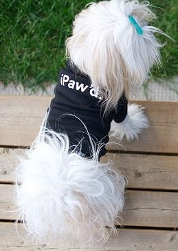 iStyle iPaw'd t-shirt