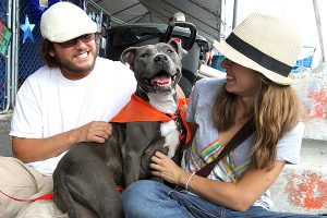 The effective answer to BSL: Breed Neutral Dog Laws