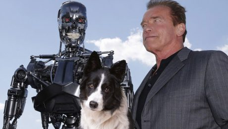 Dog Names Inspired By 'The Terminator' Series
