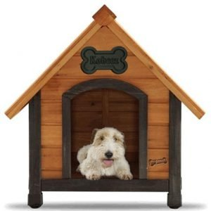 Dog house reviews