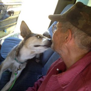 Blogger helps reunite homeless veteran with lost dog