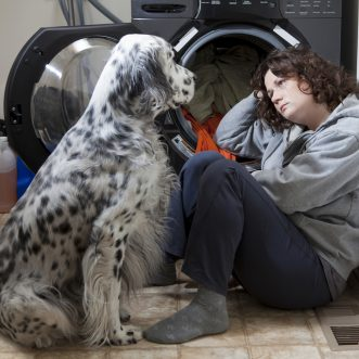 Dog's life saved thanks to new domestic violence law