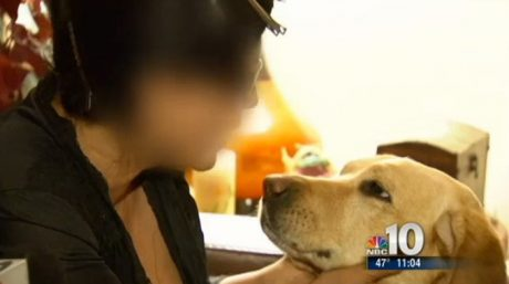 Guide Dog Saves Blind Woman From Both Intruders And Gas Leak In One Night