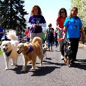 Join Bark For Life and walk in the battle against cancer