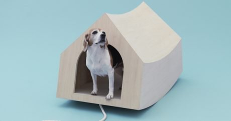 In the dog house: 13 indoor structures for your pet
