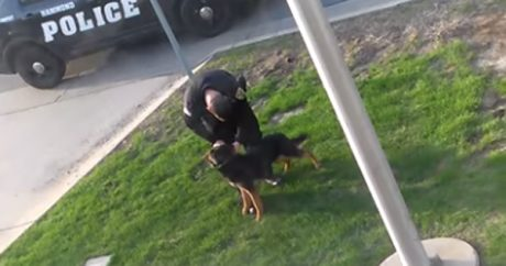 Indiana police officer caught on camera allegedly abusing K-9 partner