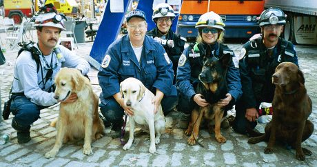 What we've learned from the four-legged heroes of 9/11