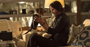 Beagle co-stars with Keanu Reeves in new revenge flick