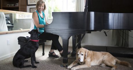Music Therapy For Dogs And Cats