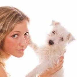 Finding The Right Dog Sitter For Your Pooch
