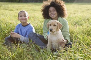 Our First Big Loss: Helping Children Through The Grieving Process And Loss Of A Pet