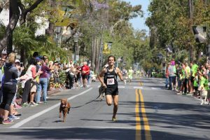 Doggone News Roundup: Konjo The Quick, Funeral Dogs, Pups Vs. Humans & More…