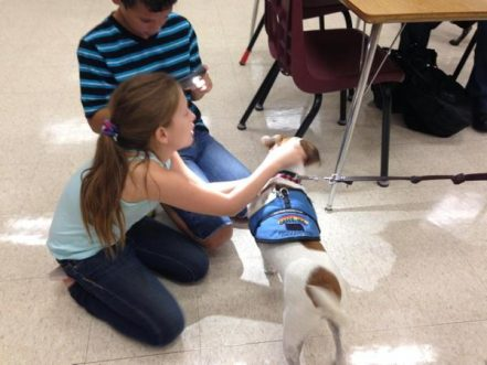 Therapy Dogs Deployed To Combat Bullying In Kansas Middle School