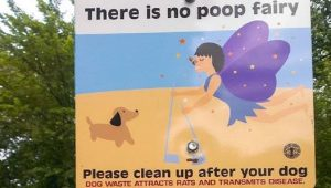 15 Best Dog Poop Signs [Pictures]