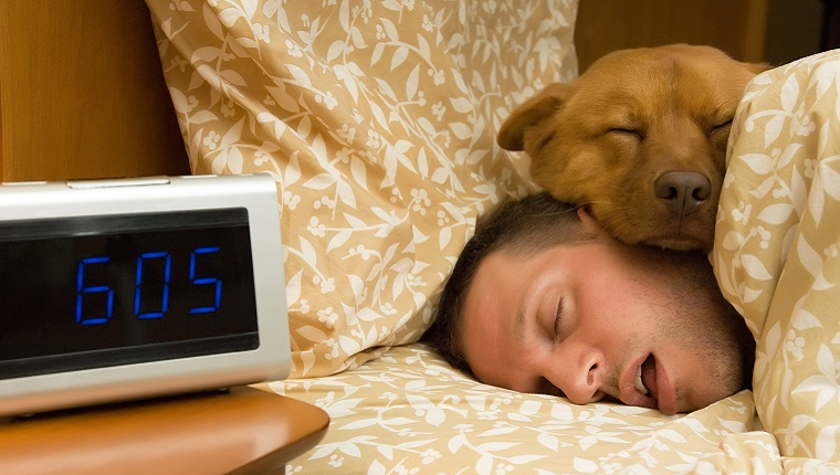 A dog sleeps resting his head on his owner's head. A digital clock next to the bed reads 6:05.