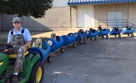 Fort Worth Dog Train Goes Viral Again [PICTURES & VIDEO]