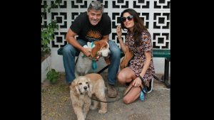 Amal And George Clooney Adopt A Shelter Dog Into Their Family
