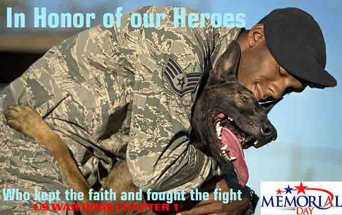 vetertans-day-military-dogs-3