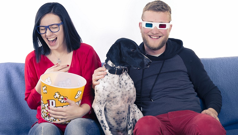 A couple sit on a couch laughing with a dog between them. The woman holds a bucket of popcorn and the man has 3D glasses on.