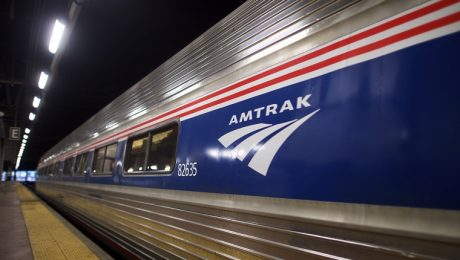 Amtrak Now Allows Some Pets To Ride On Trains, Finally