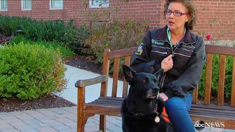Search And Rescue Dog Finds Lung Cancer In Owner And Saves Her Life