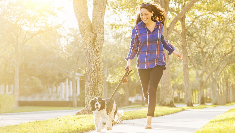 A dog owner goes for a morning run with her Spaniel on leash next to her.