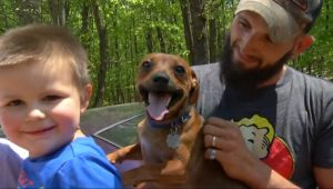 Family Dog Stayed With His Boy While He Was Lost In The Woods