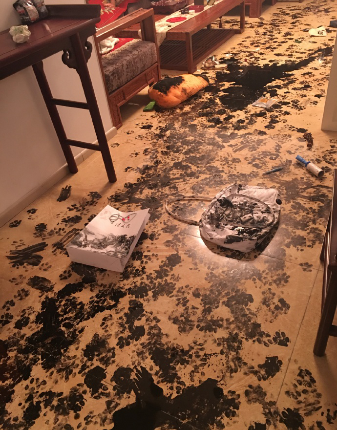 Paw prints cover the floor, a purse, and a pillow.