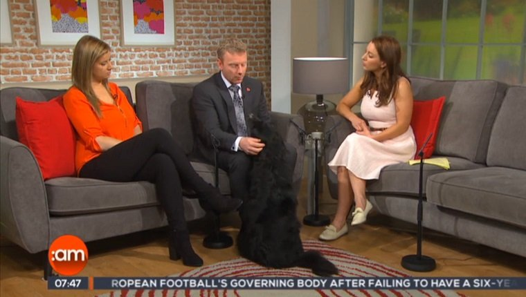 Alan Tobin appears on a talk show with his dog.