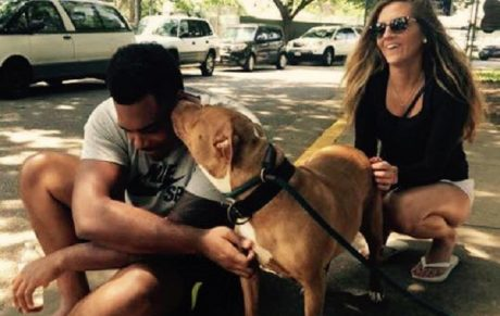 Baltimore Ravens Football Player Ronnie Stanley Adopts Shelter Dog Nobody Wanted