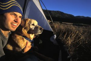 How To Have The Best Camping Trip With Your Dog