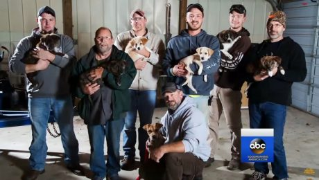 Bachelor Party In The Woods Accidentally Turns Into Awesome Puppy Rescue