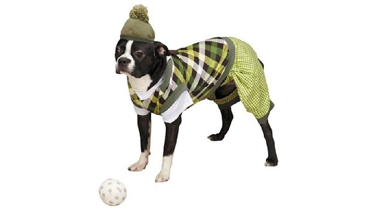 sports dog gifts 7