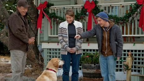 6 Dog Holiday Movies To Get You In The Winter Spirit