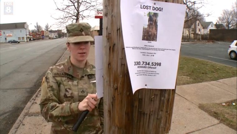 army-private-lost-dog-1