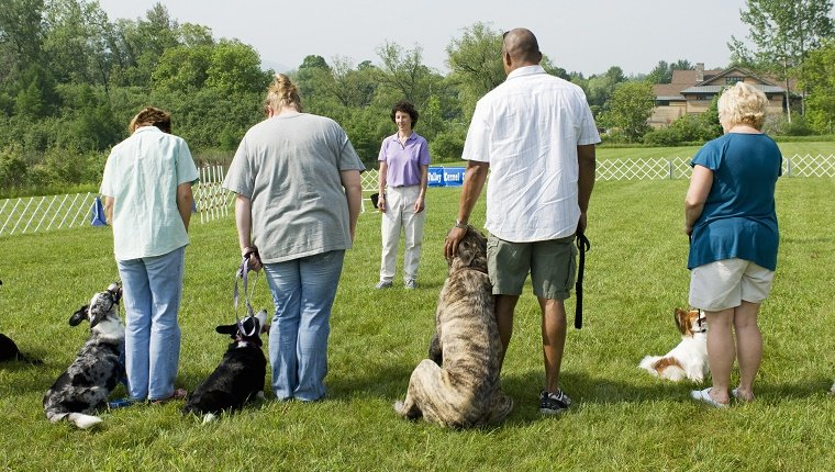 Instructor giving direction to a line of owners with their dogs during a dog training class.