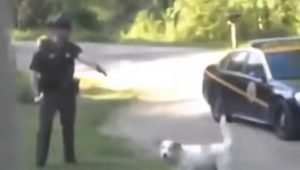 Woman Arrested For Protecting Her Dog From Cop Who Wanted To Shoot Him Files Lawsuit