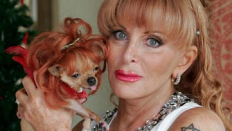 10 Lucky Dogs Who Inherited Big Fortunes