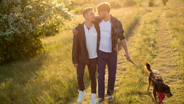 Young gay couple in a meadow with their dog. Embracing. Caucasian ethnicity, brown hair, casual. Summer time, sunset.
