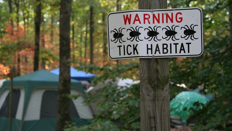 a sign warns about tick habitat at a campground, with camping tents in the background in the midst of sunlit, colorful forest.