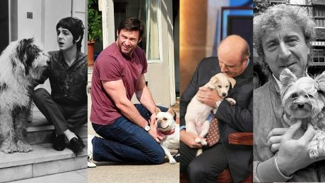 20 Pictures Of Celebrity Dog Dads For Father's Day [GALLERY]