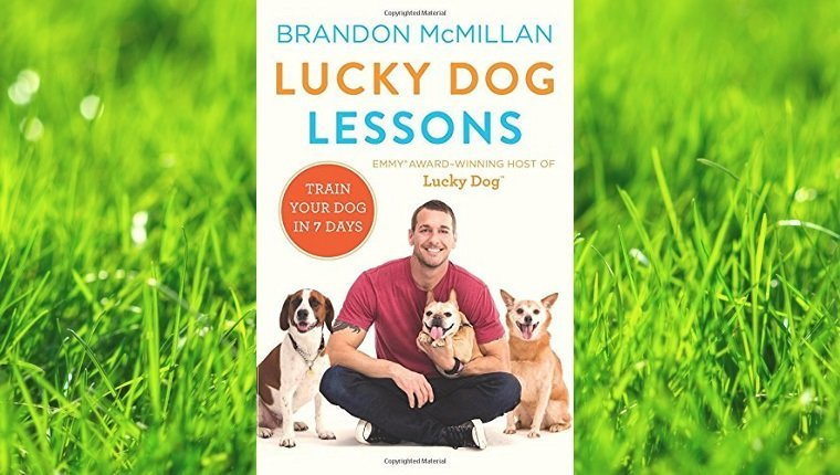 top-rated-dog-training-books-10