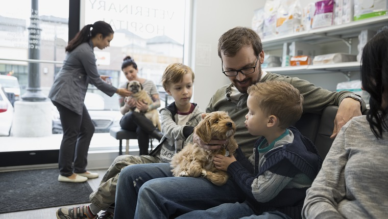Father and sons waiting with dog veterinarian lobby